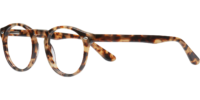 Side view of Stanford designer eyeglass frames